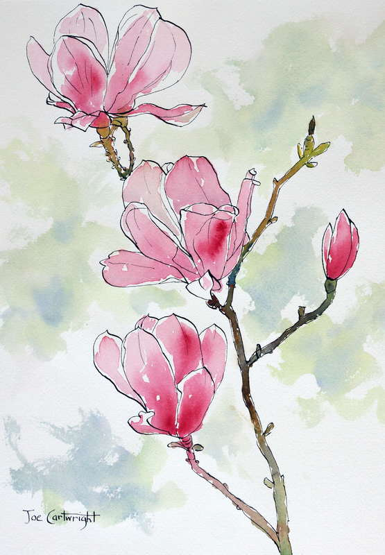 Pen and wash flower demonstration