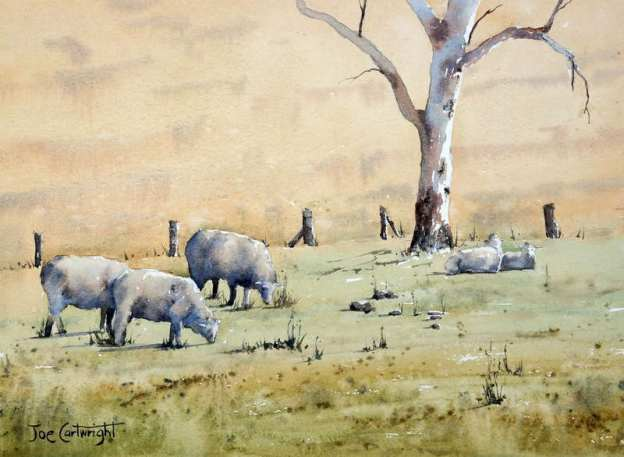 Watercolor painting of sheep on Australian farm