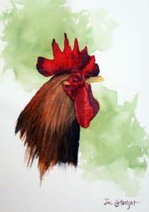 Watercolor painting of rooster head