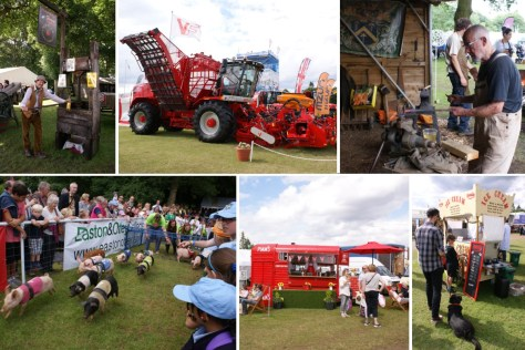 Royal Norfolk Show composite images 2016