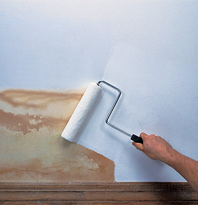 Paint And Primer >> A Primer On Paint Adhesion Problems With Paint Adhesion And