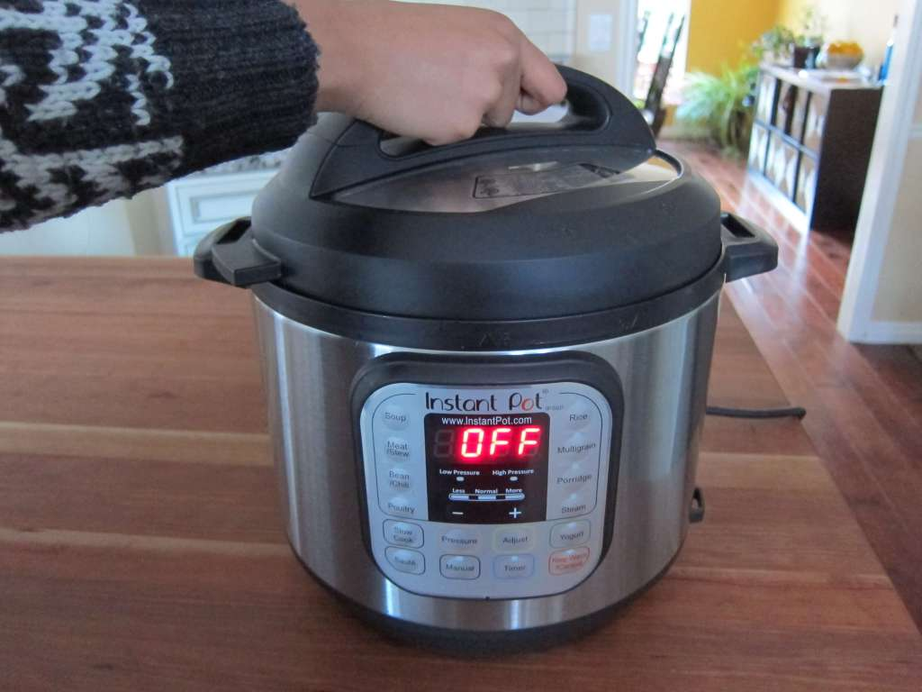 Instant Pot Manual - Water Test Open Lid