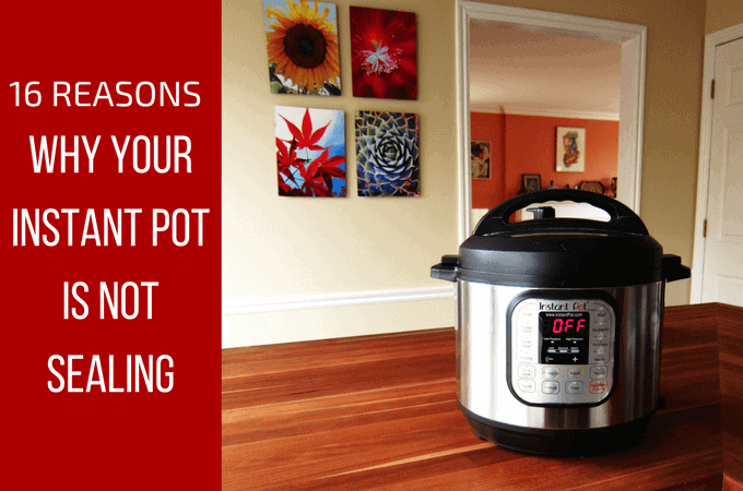 16 reasons why your instant pot is not sealing L1 - Paint the Kitchen Red
