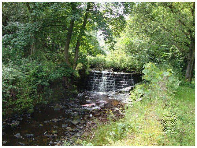 glenpatrick water