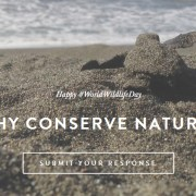 worldwildlifeday why conserve