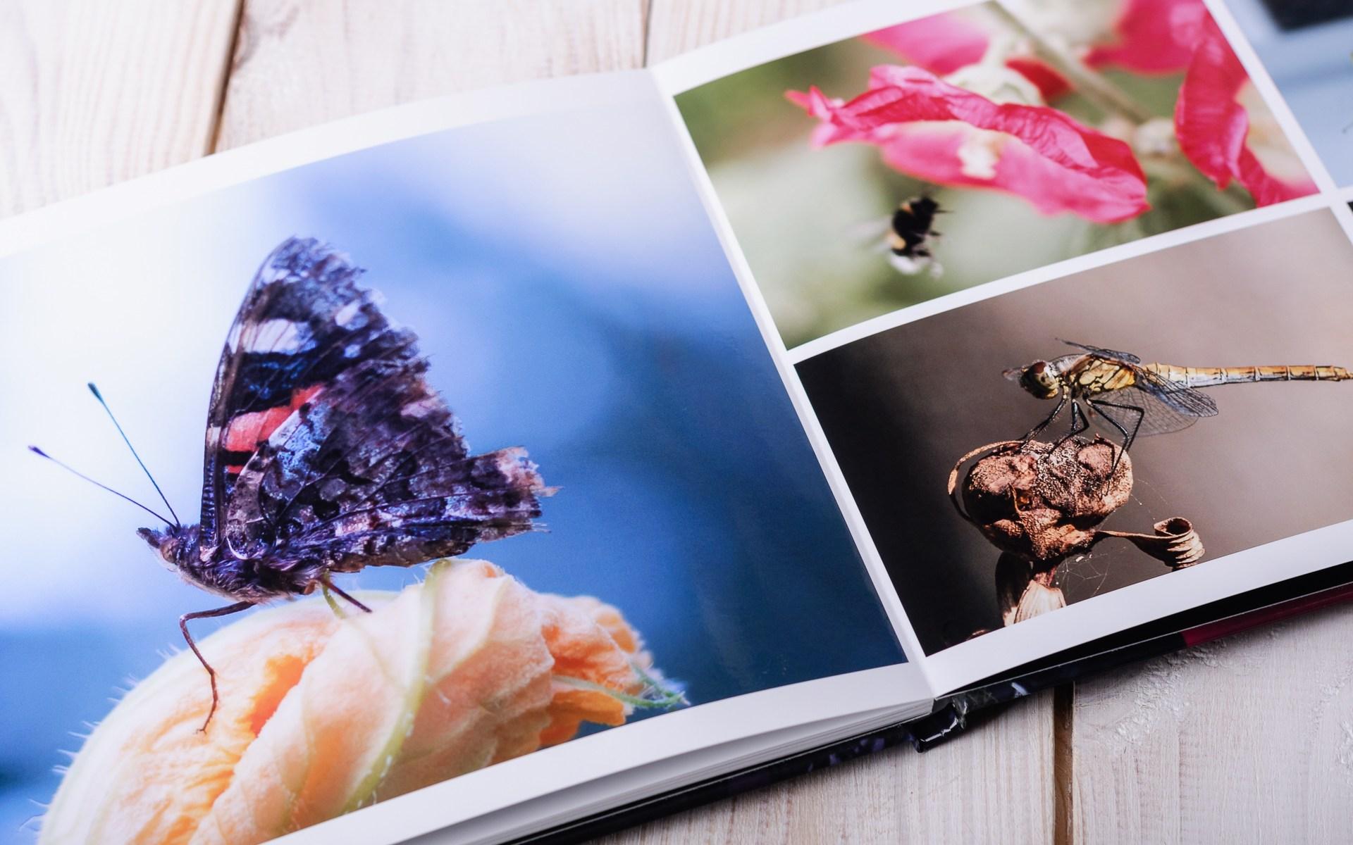 Układy zdjęć w fotoksiążce