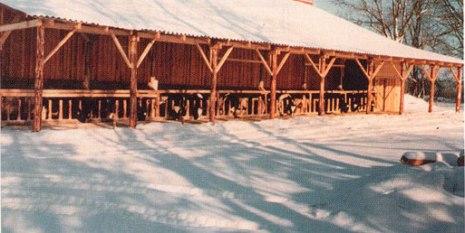 Eesti esimene külmlaut