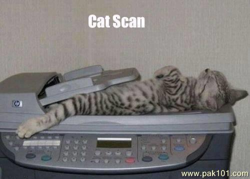 Image result for pictures of a scanner comical