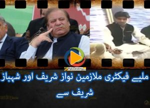 Factory Workers Nawaz and Shahbaz Sharif