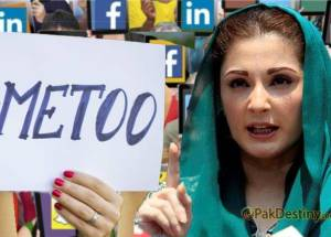maryam social media harass