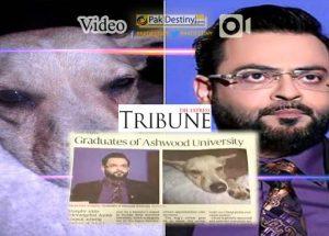 dog and amir liaquat graduates of ashwood uni