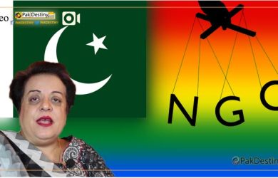 ngos-secret-anti-social-and-anti-state-activies-shireen-mazari