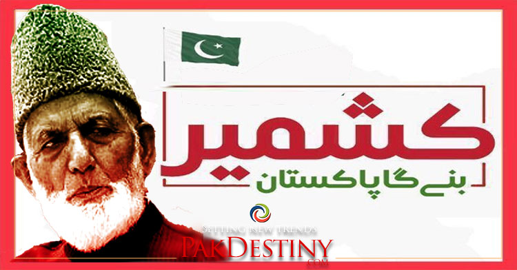 dream of kashmir leader syed ali geelani