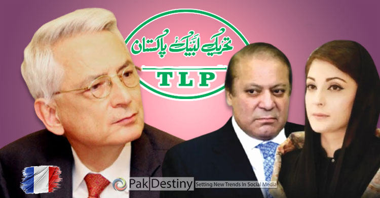 Nawaz comes to Imran's rescue in Parliament over TLP demand to expel French envoy to please establishment