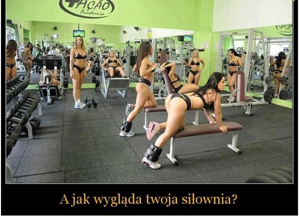 memy siłownia