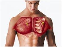 Trening i ćwiczenia klatki piersiowej