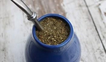 yerba mate herbata