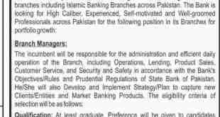 Bank Of Punjab BOP Jobs 2019 Branch Manager Advertisement Apply Online
