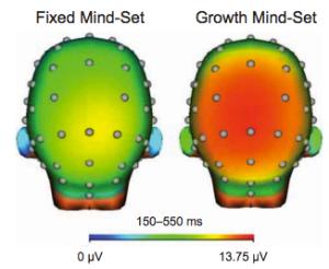 fixed vs growth mindset brain