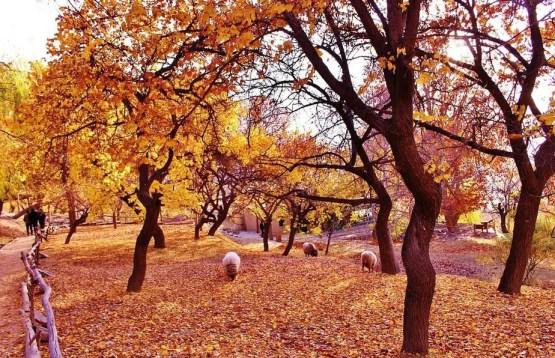honeymoon places Pakistan, Beautiful nture, the beauty of Pakistan, Northern Area Paksitan