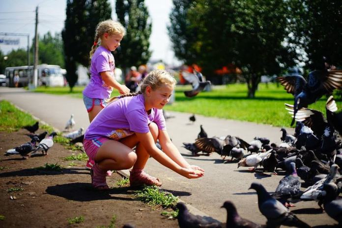 sensory bin, activities for kids, great time, outdoor fun, feeding birds , nature crafts for kids