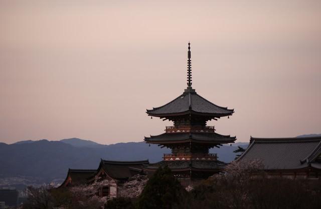 京の街を眺める
