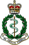 RAMC_Graduated_Colour