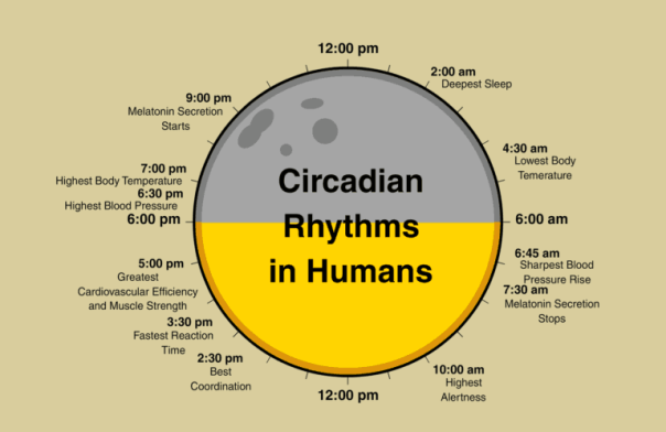 circadian-lighting-IoT