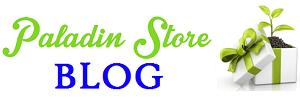 Blog Paladin Store Logo 300x100