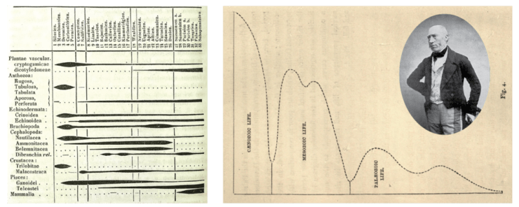 Figure 1 — A: Spindle diagrams plotted by Heinrich Georg Bronn from his tables of fossil plants, invertebrates, and some vertebrates. B: Diversity curve plotted by John Phillips (pictured) using British fossils. From: Life on the Earth: Its Origin & Succession (1860).