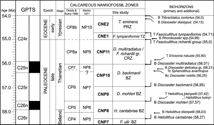 An example of a biozonation scheme, taken from Agnini et al. (2014). Note the different biozone schemes by Martini (1971) and Okada & Bukry (1980) to display variation in species occurrences at different latitudes. This particular scheme is for low and middle latitudes.