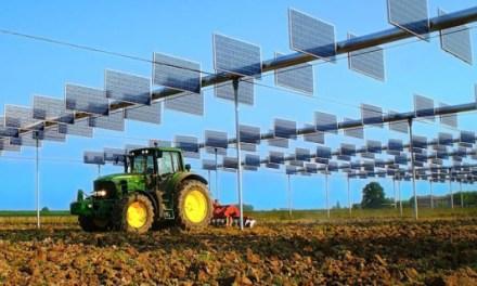 I bandi PSR un'opportunità per le imprese agricole