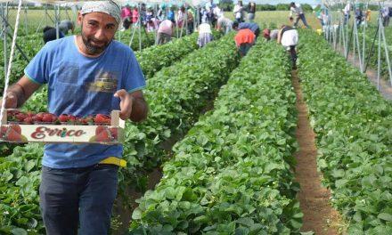 Prosegue il progetto della Cia Agricoltori Italiani per far conoscere il mondo agricolo e le sue produzioni agli studenti
