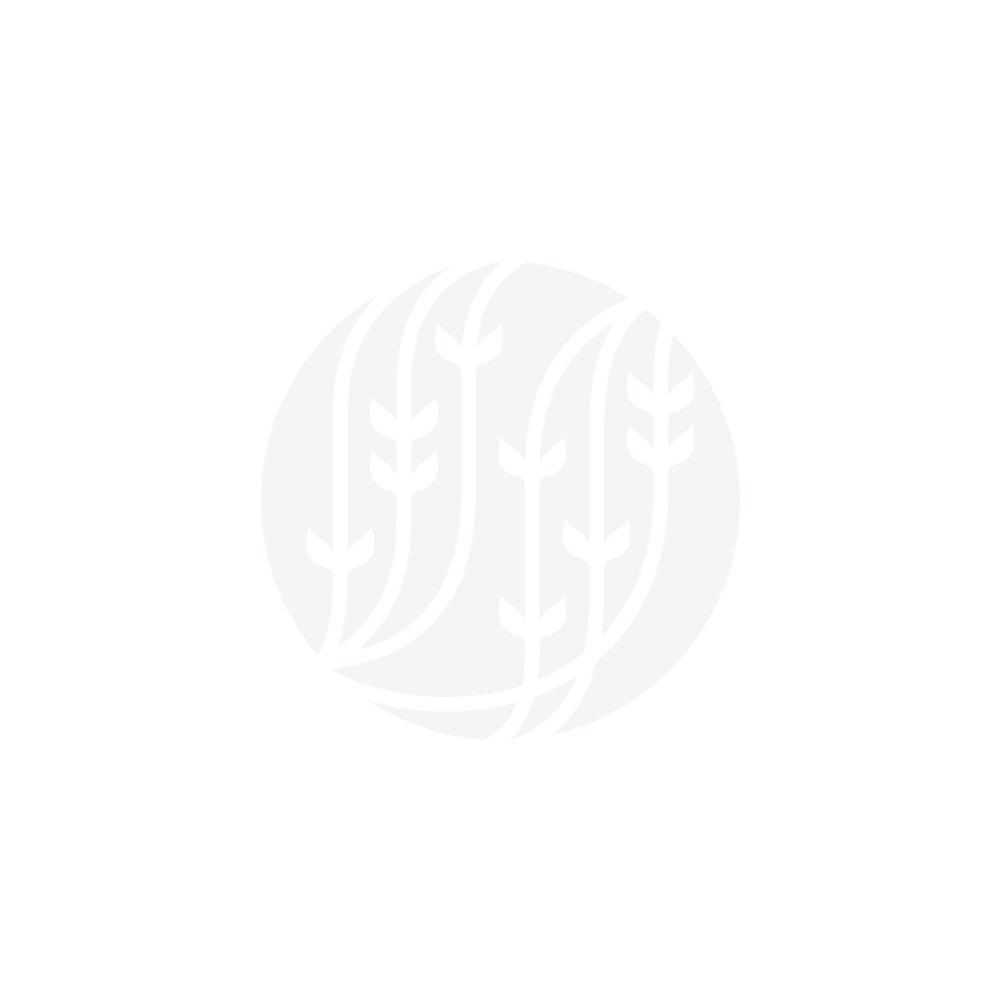NÉPAL HIMALAYAN SHANGRI-LA S.F.T.G.F.O.P.1