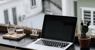 A glimpse of life after graduation: remote work in publishing