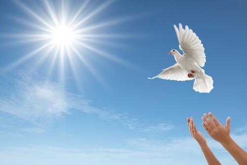 Terço Pedindo a Luz do Espírito Santo.