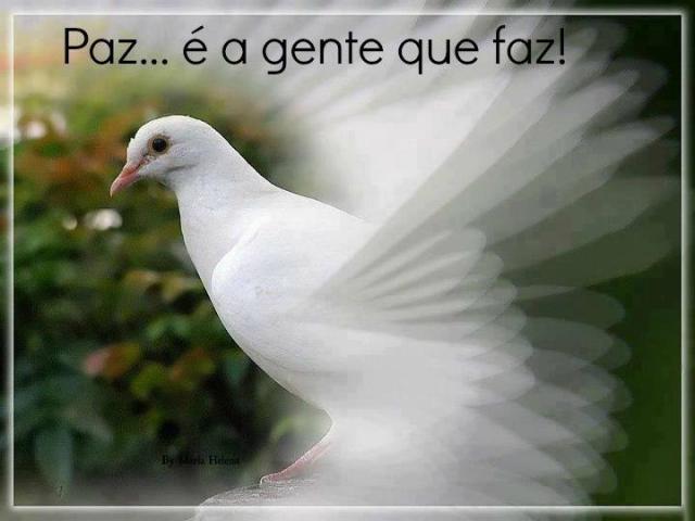 Terço de Paz