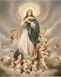 08/01 Nossa Senhora imaculada Conceição, rogai por nós!!