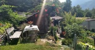 Uma casa simples no meio da estrada revela o cuidado do morador: plantas no telhado e vaso na mesa