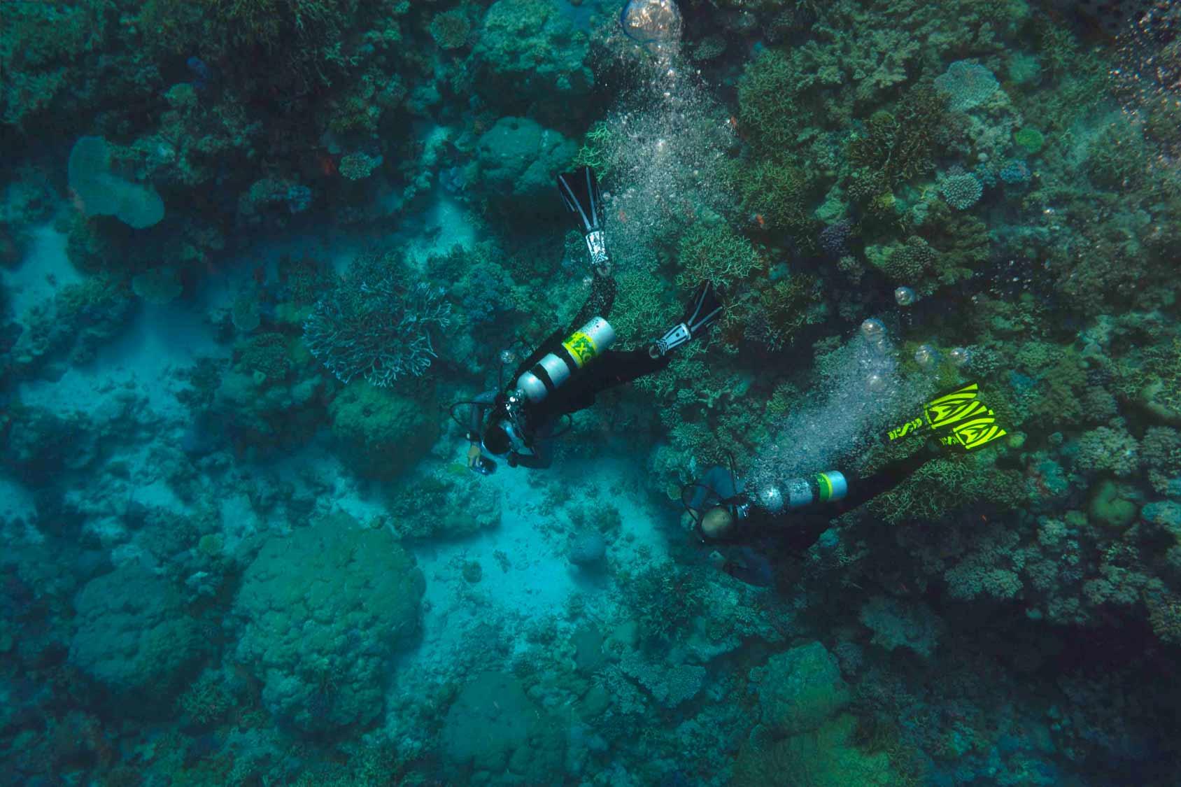 Padi Enriched Air Nitrox Course Palawan Divers