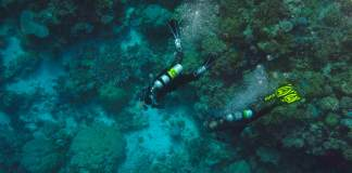 padi-enriched-air-nitrox-course-el-nido