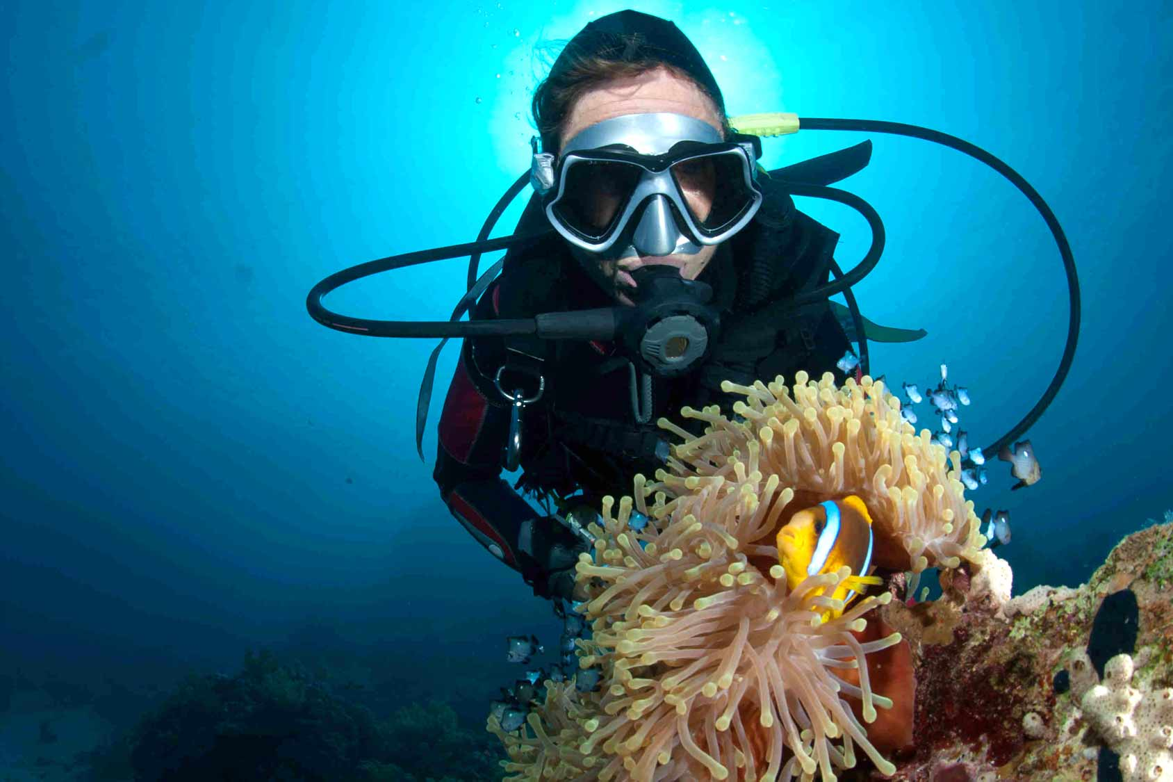 Padi Referral Open Water Course Palawan Divers