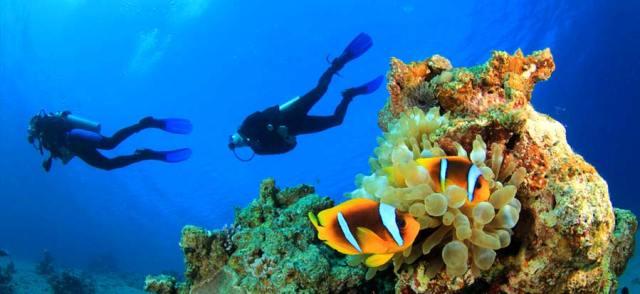 open water course scuba diving-lesson padi