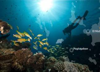 close-up-underwater-photography