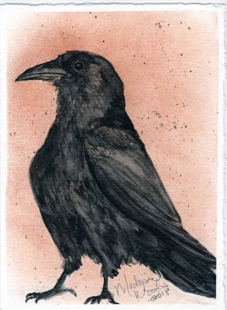 """""""Kady's Crow"""". 5 x 7, original not for sale. Prints and stickers are available."""