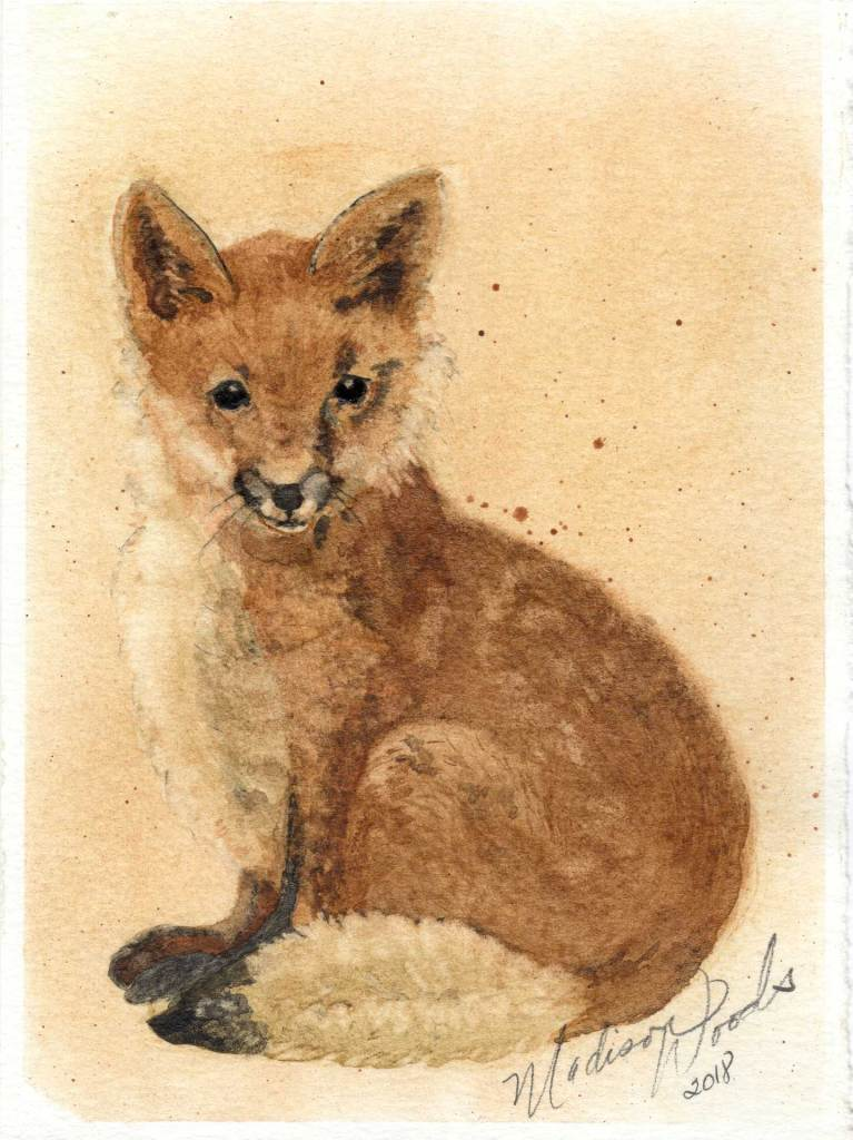 "Fox No. 1. Actual size 5.5 x 7.5"". All colors, earth pigments, local to Wild Ozark. Original not for sale. Prints, stickers, note cards available."