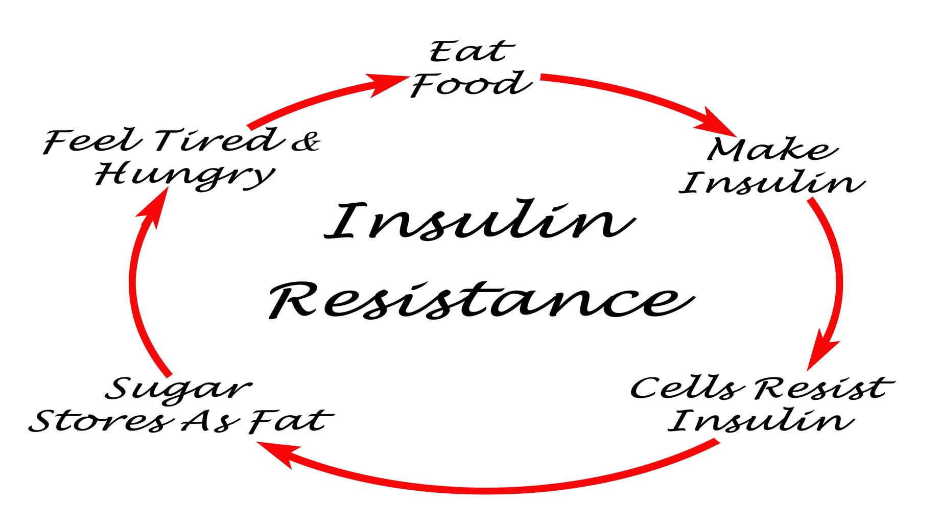 L Insuline