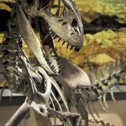 California | Making Monsters: Science in Art