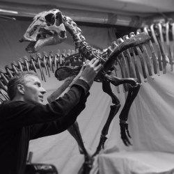 """Building Dinosaurs"" with Artist Michael Holland"