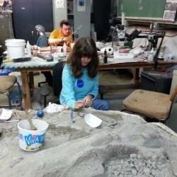 Field Internship @ TM Dinosaur Center